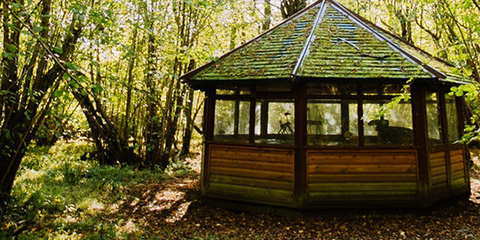 Wooden gazebo sitting in a wooded area